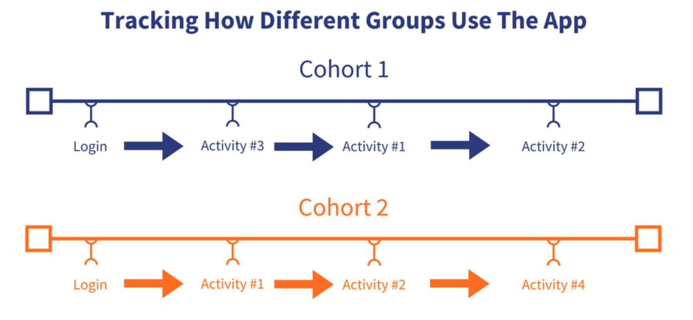 User Cohorts
