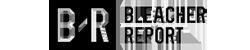 bleachersized-new